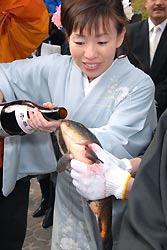 Карп пьёт сакэ во время странной церемонии