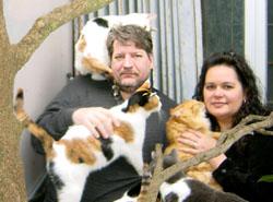 «Кошачья сеть» в Японии