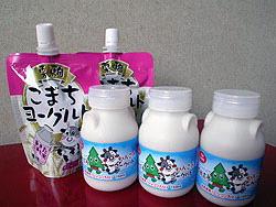 Японская фирма создала специальный йогурт из корня лотоса для больных сенной лихорадкой