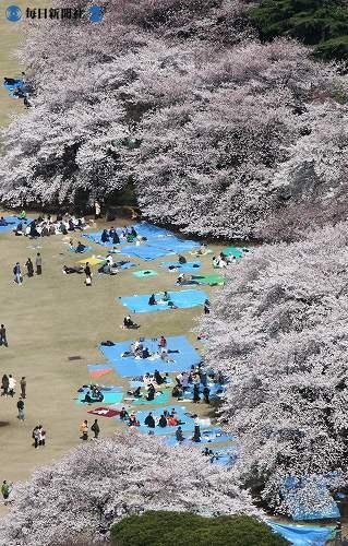 http://news.leit.ru/wp-content/uploads/2009/02/Japan_from_the_air_2008_28.jpg