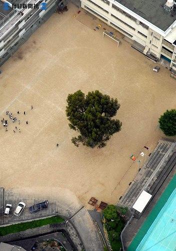 http://news.leit.ru/wp-content/uploads/2009/02/Japan_from_the_air_2008_48.jpg