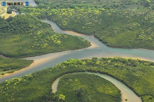 Нетронутая природа на острове Амами осима