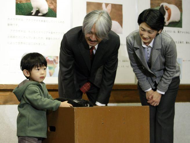 Принц Хисахито гладит кролика