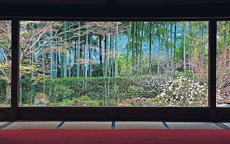 Хосэн-ин: вид изнутри храма сквозь бамбуковую рощу на окружающие горы окружен идеальной рамкой