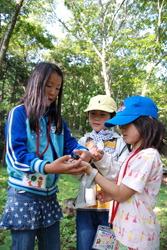 Участники программы наблюдений на открытом воздухе, которая прошла в августе в Косугэ, префектура Яманаси