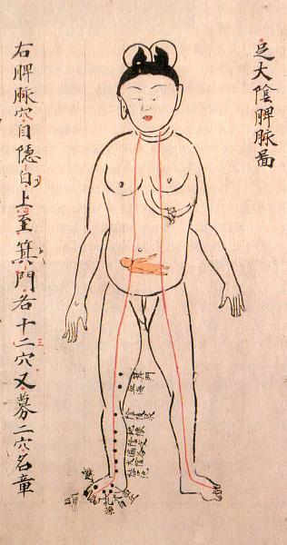 Анатомические иллюстрации эпохи Эдо