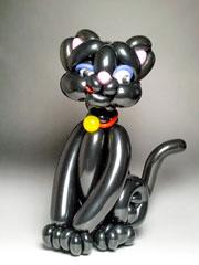 Чёрный кот, аналогичный тому, что получил первый приз на конвенте в Техасе. Фото Такэхиро Кай