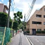 japan_green_tokyo_02