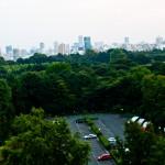 japan_green_tokyo_04