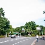 japan_green_tokyo_07