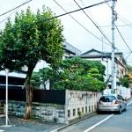 japan_green_tokyo_19