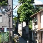 japan_green_tokyo_20