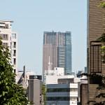 japan_green_tokyo_22