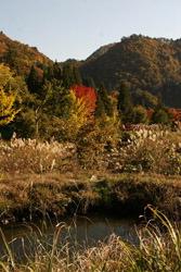 Осенние листья раскрашивают горы