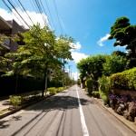 japan_summer_tokyo_11