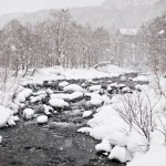 winter_in_the_mountains_in_japan_12