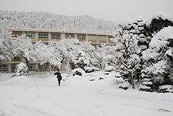 Заснеженные вишнёвые деревья перед старшей школой Гудзё