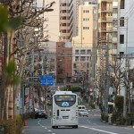 japan_16th_of_march_in_tokyo_15
