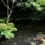 japan_sanzen-in_07
