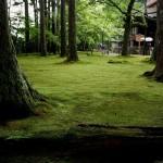 japan_sanzen-in_20
