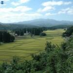 Развалины поместья в деревне Хондэра в Итиносэки составляют часть культурного наследия Хираидзуми