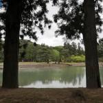 Пруд и сад храма Моцу-дзи в Хираидзуми. 5-е мая 2008 г.
