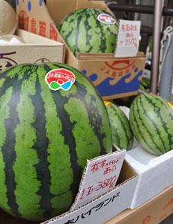 Вкусный, но…: Арбуз с ценником 3800 иен (1329 руб.) ждёт своего покупателя в одном из магазинов в токийском районе Тюо. 22-е июля 2011 г.