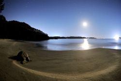 Лунный свет отражается в морской воде. Пляд Кугунари в Кэсэннуме, префектура Мияги. Фото сделано в 2008 году