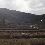 Заброшенный г. Кацурао, находящийся за пределами зоны отчуждения. Город был покинут, когда долговременное пребывание в нём стало опасно для здоровья жителей. 20-е ноября 2011 г.