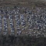 Повреждённые цунами автомобили припаркованы на поле в г. Исиномаки, 18-е ноября 2011 г.