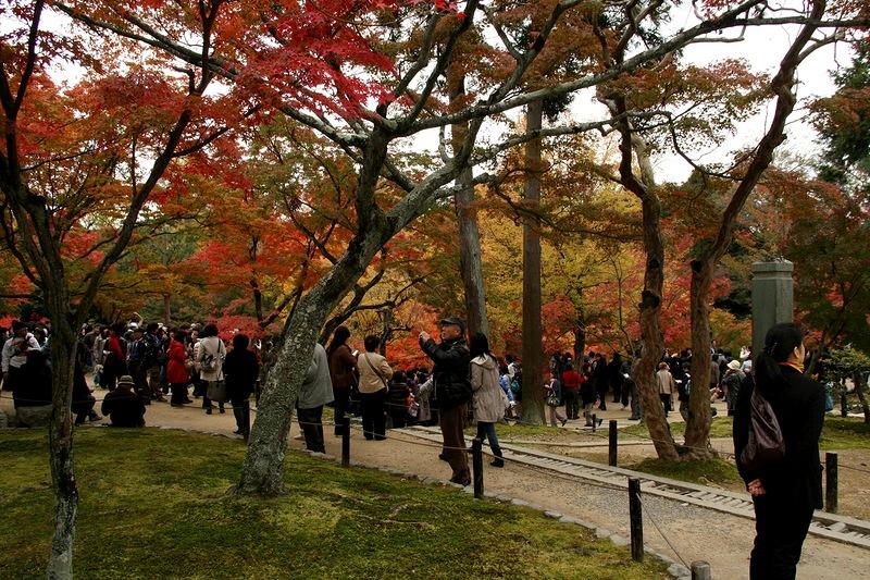 Осень в храме Тофуку-дзи