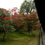 japan_tofuku-ji_autumn_2011_12