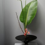 japan_ikebana_and_movies_02