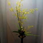 japan_ikebana_and_movies_16