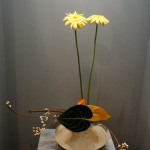 japan_ikebana_and_movies_20