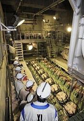 Представители властей префектуры Фукусима инспектируют резервный дизель-генератор, расположенный в подвале реакторного здания АЭС «Фукусима-1». 11-го марта генератор вышел из строя в связи с затоплением подвала