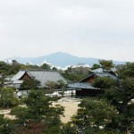 japan_plum_trees_kyoto_00