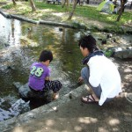 japan_fathers_and_children_05