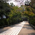 Дорожка к главному храму