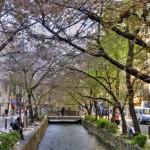 Одна из наиболее известных улиц в Киото