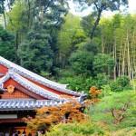 Крыша главного храмового здания