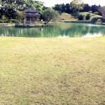 okinawa_shikinaen_garden_03