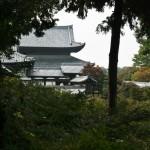 japan_momiji-gari_2012_25