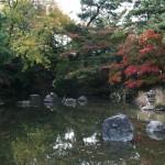 japan_momiji-gari_2012_2_11