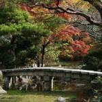 japan_momiji-gari_2012_2_16