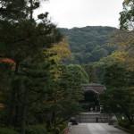 japan_momiji-gari_2012_2_22