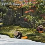 Бабульки, ухаживающие за садом, очень удачно вписались в пейзаж цветовой гаммой и позой