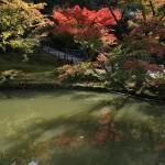 japan_momiji-gari_2012_2_53