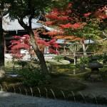 japan_momiji-gari_2012_2_63