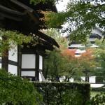 japan_momiji-gari_2012_47
